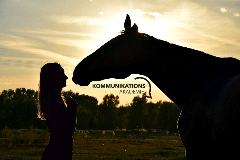 Pferd-mit-Logo (c) Pixabay